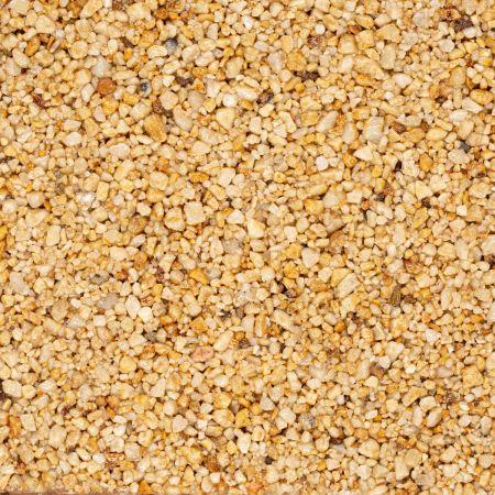 Corn Meadow VT