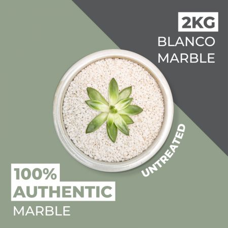 Natural World Rock Plant Topper Stones - Blanco Marble