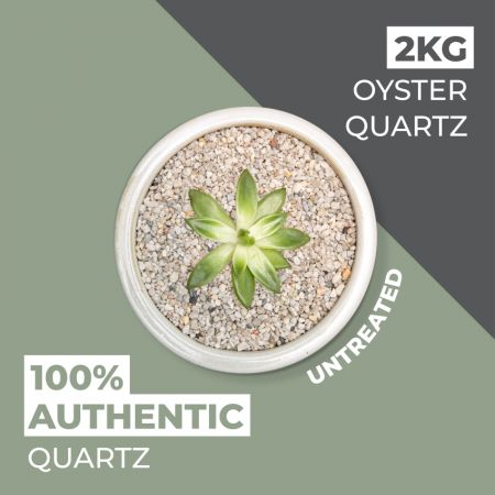Natural World Rock Plant Topper Stones - Oyster Quartz 2kg (Free Next Day Delivery)