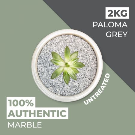 Natural World Rock Plant Topper Stones - Paloma Grey 2kg (Free Next Day Delivery)
